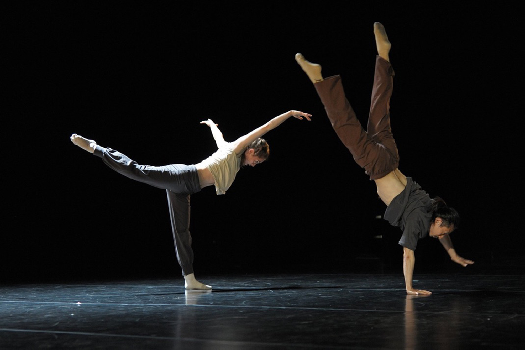 James Wilton Dance Company Dansa Contemporània